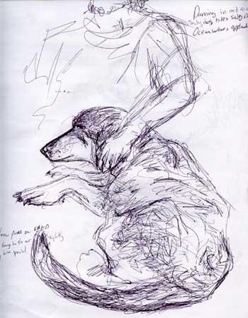 dogsketch