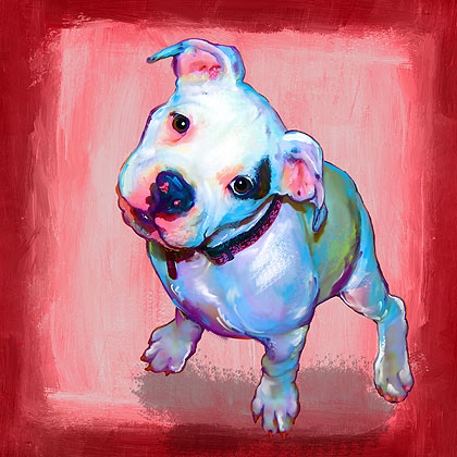 american bulldog puppy art portrait