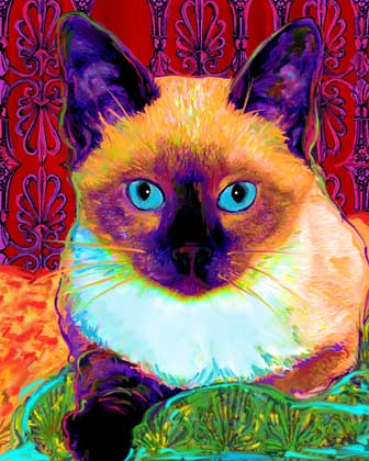 cat portraits by art paw prints on canvas cat art 336x420